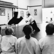 Fumio Toyoda Shihan : Kenshinkan Dojo : November 1993